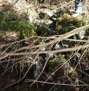 Sprängd bergsklack efter igensättning 2012-04-07, sett västerifrån